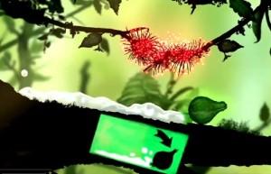 Puddle, дерево, цветок