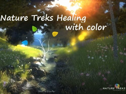 Nature Treks Healing with Color