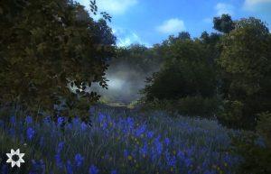 вечер на природе люпины в поле деревья